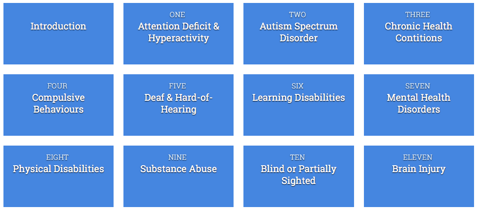 Supporting Students with Disabilities Grid